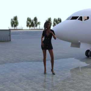 My New Life's As A Stewardess