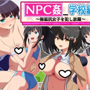 NPC Fuck: School Chapter ~All-You-Can-Fuck Compliant Girls~
