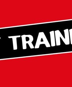 Confidant Trainer